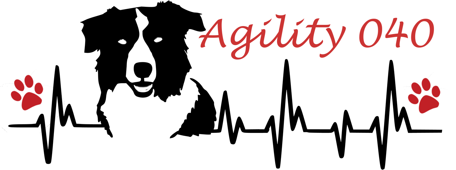 Agility Eindhoven